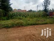Kiamumbi Commercial Plot 50x100 Ft With Ready Freehold Title Deed | Land & Plots For Sale for sale in Nairobi, Kahawa West