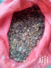 Kayaba Seeds For Sale | Feeds, Supplements & Seeds for sale in Nairobi, Nairobi Central