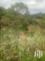 1/8 Acre Kamuyu Nyeri Town | Land & Plots For Sale for sale in Nyeri, Rware