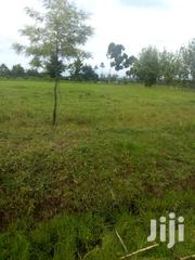 2 Acre of Land on Sale at Karati Naivasha | Land & Plots For Sale for sale in Nakuru, Naivasha East