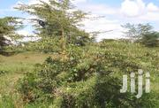 Prime Land for Sale! | Land & Plots For Sale for sale in Kiambu, Ruiru