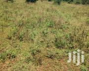 Land on Sale | Land & Plots For Sale for sale in Siaya, North Sakwa (Bondo)