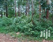 Round Poles | Garden for sale in Migori, Wasweta II