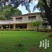 Spacious 6br With Sq Own Compound To Let In Lavington | Houses & Apartments For Rent for sale in Nairobi, Lavington