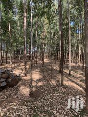 14 Acres in Urban Migori | Land & Plots For Sale for sale in Migori, Suna Central