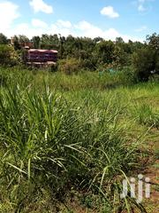 50 By 100 In Kamiu | Land & Plots For Sale for sale in Embu, Mbeti North