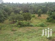 4 Acres Of Prime Land At Kabiti Touching Superhighway | Land & Plots For Sale for sale in Murang'a, Kambiti