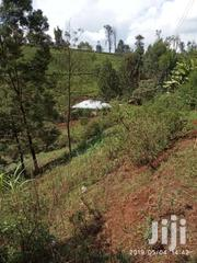 40 X 80 Kawaida Banana | Land & Plots For Sale for sale in Kiambu, Cianda