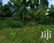 1/4 Plot At Gamerock,Nyeri Opp. Mt Kenya Academy | Land & Plots For Sale for sale in Nyeri, Kiganjo/Mathari