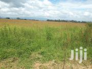 50 Acres For Sale | Land & Plots For Sale for sale in Nakuru, Menengai West
