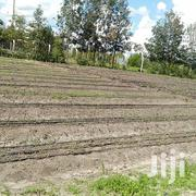 Open Field Drip Irrigation | Landscaping & Gardening Services for sale in Nairobi, Embakasi