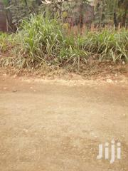 60 By 140 In Banana Center | Land & Plots For Sale for sale in Kiambu, Muchatha