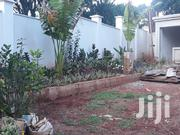 Quality Gardening And Lanscaping Services | Landscaping & Gardening Services for sale in Nairobi, Karen