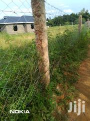 Selling 2 Acre Parcel of Land at Kabaa, 4km From Kithimani. | Land & Plots For Sale for sale in Machakos, Kithimani