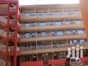 Bed Sitters To Rent In Rongai | Houses & Apartments For Rent for sale in Kajiado, Ongata Rongai