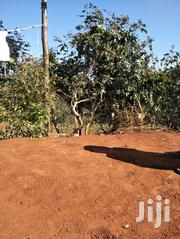 Land And Plot For Sale. | Land & Plots For Sale for sale in Murang'a, Makuyu