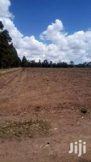Selling 10 Acres In Nyahururu Oljololok | Land & Plots For Sale for sale in Nyandarua, Kaimbaga