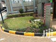 Landscaping And Maintenance. Call Us For Your Home,Office,Church,Etc   Landscaping & Gardening Services for sale in Kiambu, Kikuyu