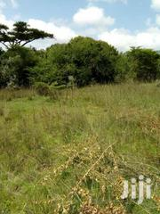 17 And 16 Acres In Nyahururu Olkalou  On Sale . | Land & Plots For Sale for sale in Busia, Bunyala West (Budalangi)