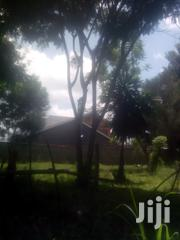 1/8 Acre at Karia Nyeri | Land & Plots For Sale for sale in Nyeri, Rware