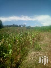 1 Acre Mugwathi Gatitu Nyeri | Land & Plots For Sale for sale in Nyeri, Rware