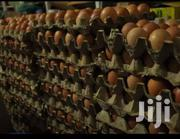 Eggs Whole Sale | Feeds, Supplements & Seeds for sale in Mombasa, Majengo