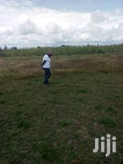 One Acre for Sale With Ready Tittle | Land & Plots For Sale for sale in Machakos, Kangundo East