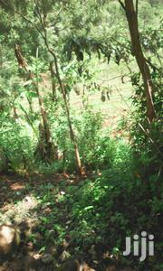 Why Struggle With The Rent While You Can Stay Yours Welcome Matuu Plot | Land & Plots for Rent for sale in Machakos, Matuu