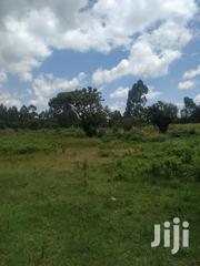 Land For Sale | Land & Plots For Sale for sale in Kiambu, Ndeiya