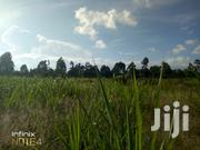 1/4 Acre Kerwa Kiambu County | Land & Plots For Sale for sale in Kiambu, Muguga
