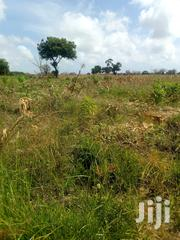 3 Acres Land For Sale At Midodoni In Gongoni Area | Land & Plots For Sale for sale in Kilifi, Gongoni