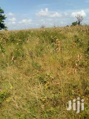 8 Acre Land In Gongoni-midodoni | Land & Plots For Sale for sale in Kilifi, Gongoni