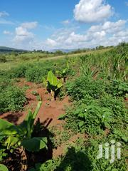 Land Fod Sale | Land & Plots For Sale for sale in Nandi, Kapsabet