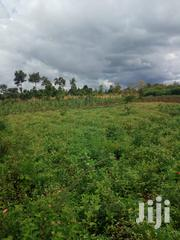 Land for Home Between Opoda Junction and Gobei | Land & Plots For Sale for sale in Siaya, North Sakwa (Bondo)
