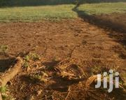 Plot With Ready Title Deed | Land & Plots For Sale for sale in Nakuru, Elementaita