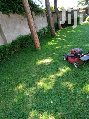 Landscaping And Grass Cutting