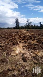 Selling 11 And 22 Acres In Nyandarua Wanjohi | Land & Plots For Sale for sale in Nyandarua, Wanjohi