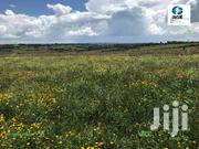 300 Acres Of Land For Sale In Molo | Land & Plots For Sale for sale in Nakuru, Molo