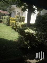 4 Bedrooms Town House To Let In Lavington   Houses & Apartments For Rent for sale in Nairobi, Kilimani