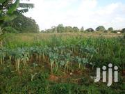 0.5 Acre Of A Prime Plot For Sale In Kitisuru West   Land & Plots For Sale for sale in Nairobi, Kitisuru
