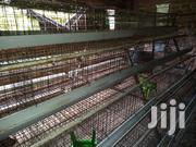 Layers Cages | Farm Machinery & Equipment for sale in Nairobi, Imara Daima