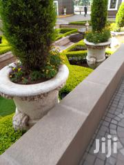 Landscaping And Gardening Maintenance | Landscaping & Gardening Services for sale in Nairobi, Karen