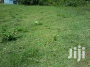 Two 1/4 Acre Plots Next to Each Other(0.1hactare) | Land & Plots For Sale for sale in Nyeri, Kamakwa/Mukaro