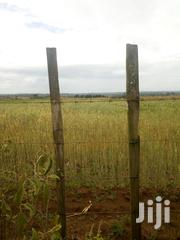10 Acres Of Land For Sale | Land & Plots For Sale for sale in Nakuru, Njoro