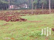 Tumaini- Nyandarua- 11 Acres | Land & Plots For Sale for sale in Nyandarua, Mirangine