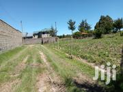 100 By 100 Prime Plot Quick Sale | Land & Plots For Sale for sale in Nyandarua, Magumu