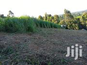 1, 3/4 Acre In Githunguri/Gitiha | Land & Plots For Sale for sale in Kiambu, Githunguri