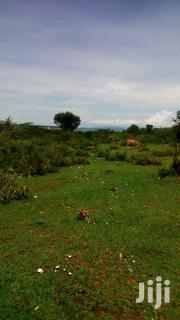 10 Acres Touching Lake Victora | Land & Plots For Sale for sale in Siaya, Yimbo West