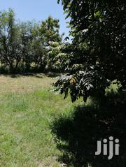 Shamba For Rent For 1 Year | Land & Plots for Rent for sale in Machakos, Kangundo West