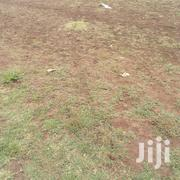 Membley 1/4 Acre at 8m,Titled | Land & Plots For Sale for sale in Kiambu, Membley Estate